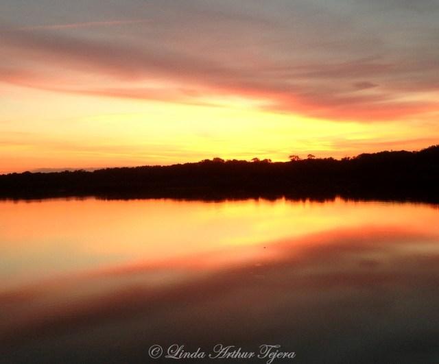 Sunrise over Lake Apopka iPhone 5